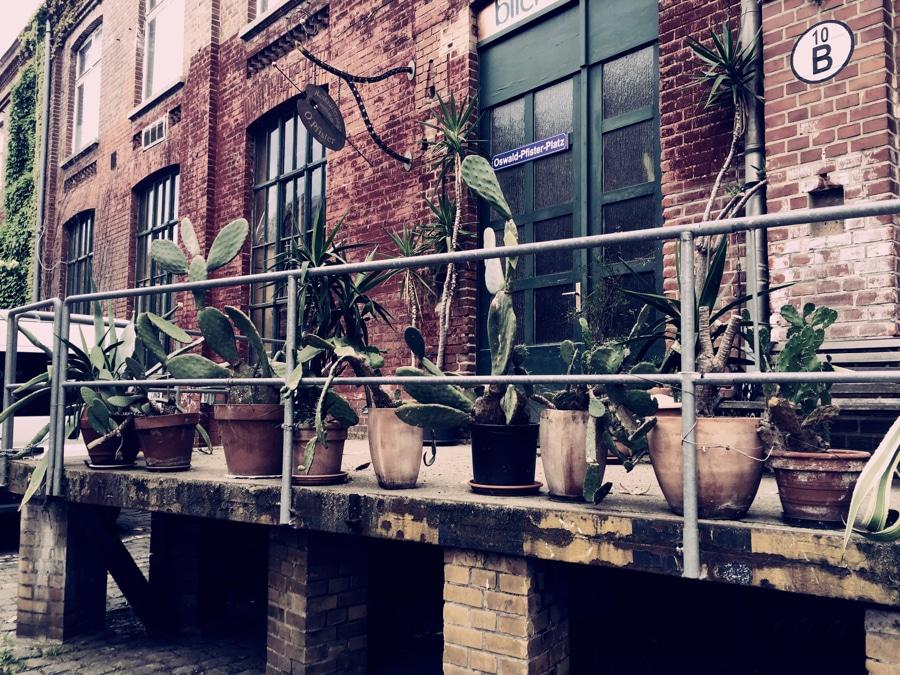 Spinner works Leipzig giant cacti