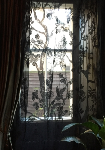 paradiso madras lace panel with bird motif in black hung at window