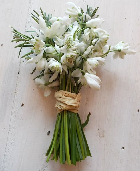 little handed bunch of snowdrops and rosemary against a whitewashed wood background
