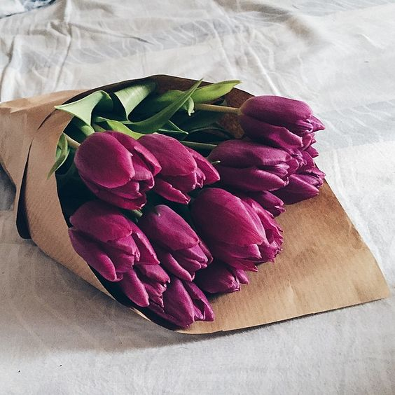 bunch of magenta tulips wrapped in brown paper