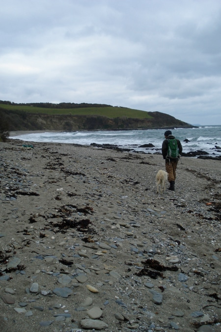 Man walking on beach with dog  looking for stones