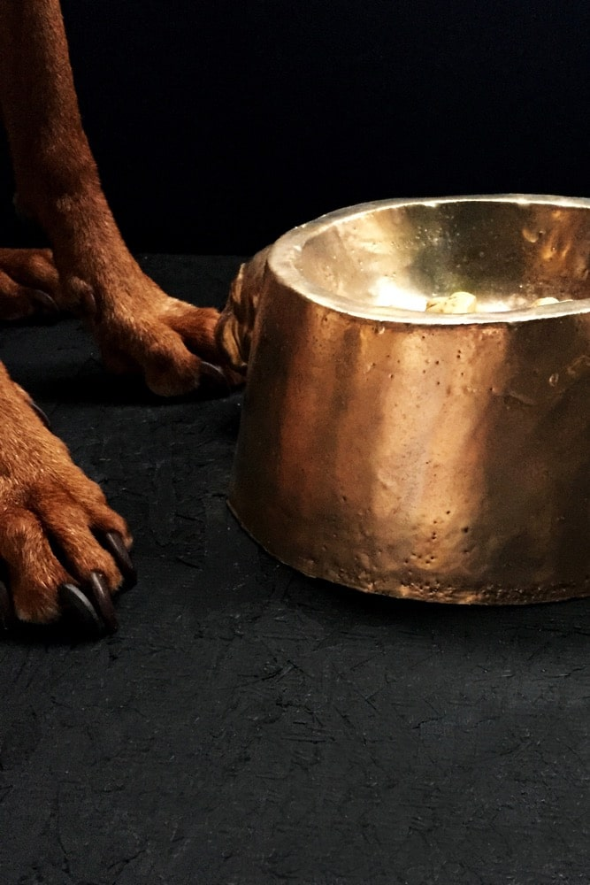 This quirky dog bowl is the ultimate in luxury for your beloved furrycompanion and would alsomake the perfect present for someone with a pampered pooch. Handmade in Berlin by the wonderfully eccentric Kuhn Keramik studio it has the characteristic Kuhn stamp and imperfect form that makes each piece unique. It has two little pug faces on the side surface - a signature image of the studio and as unique as your pup.