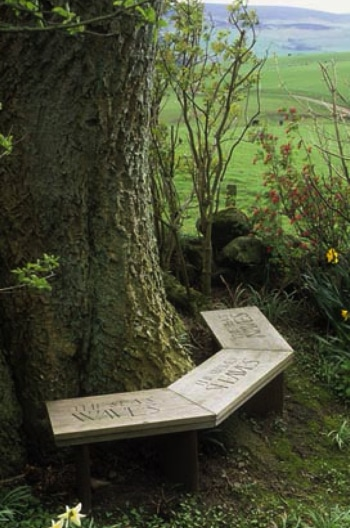 wooden bench with lettering