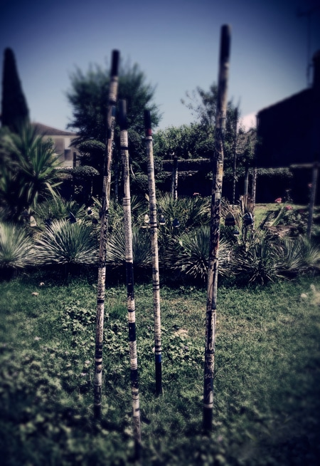 artist painted bamboo poles in tropical garden