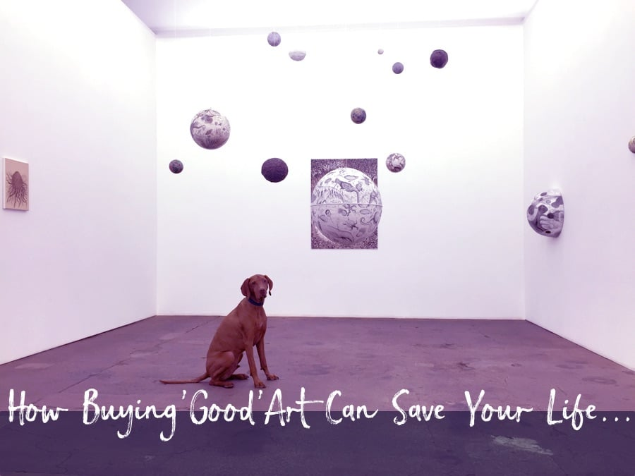image of a dog in an art gallery