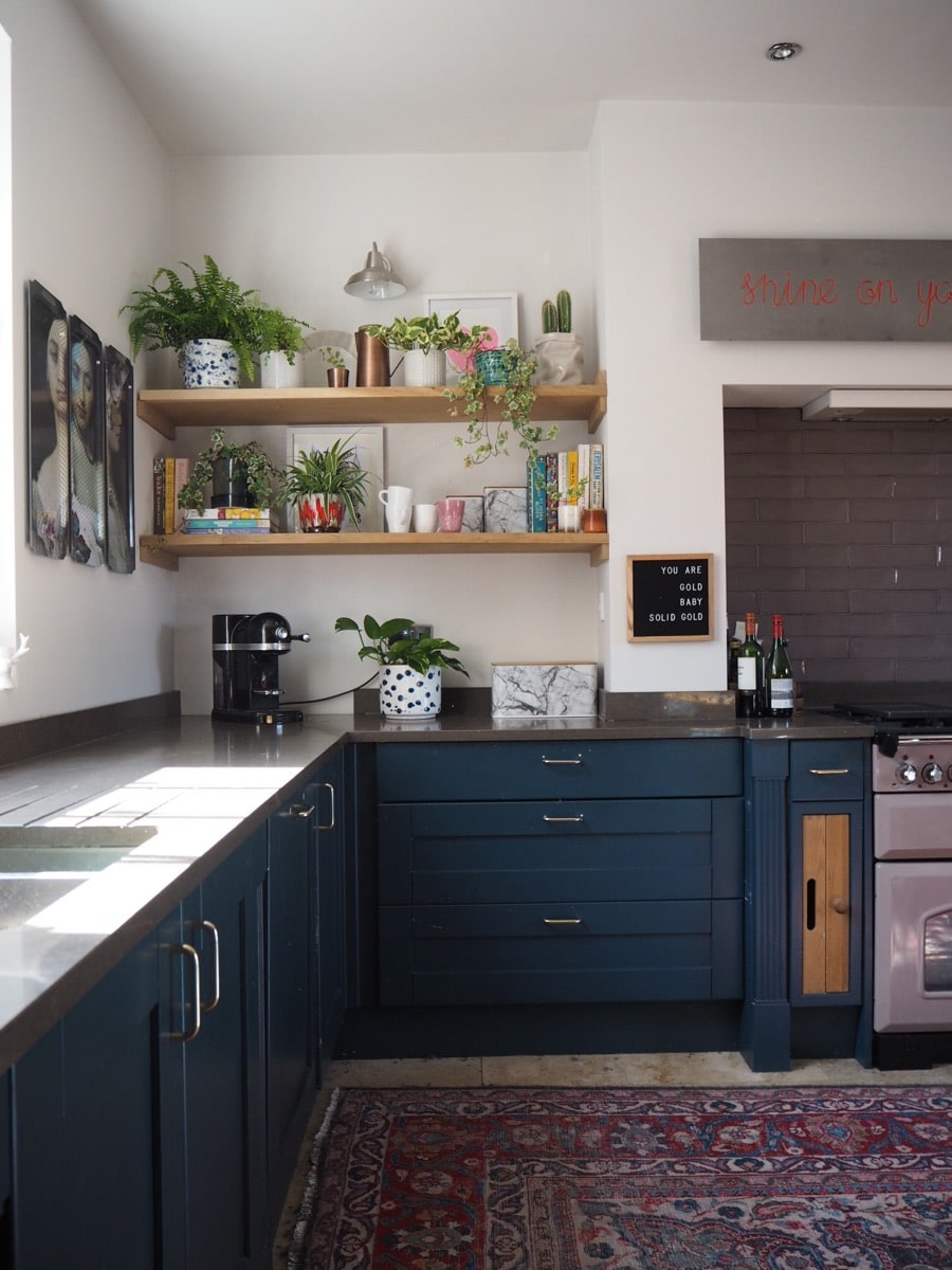 blue kitchen cupboards and plants on shelves