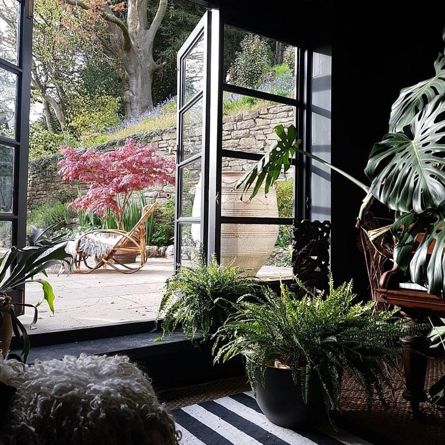 jungle style plants and a door leading to a wild garden