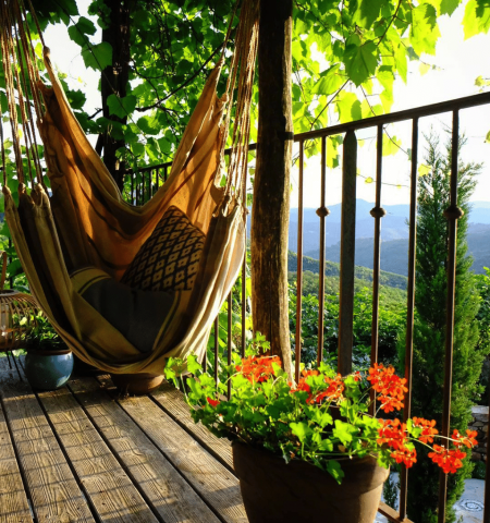 hammock in the south of France