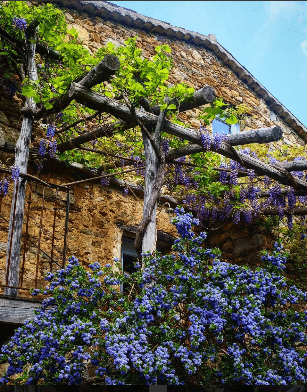 pergola in a french farmhouse