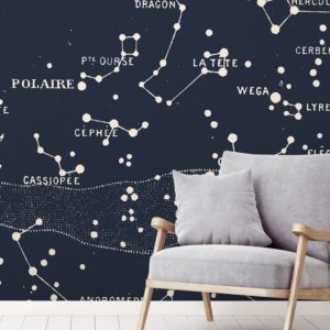 Polaire wall mural by Feathr in blue colour.  Lifestyle image.