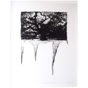 Framed Limited Edition Etching by Drew Mackie - Disseminating Oak. Cutout image of artwork on white background.