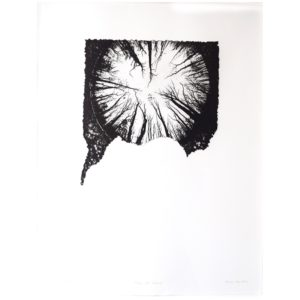 Framed Limited Edition Etching by Drew Mackie - Halo of Trees. Cutout image of artwork on white background.