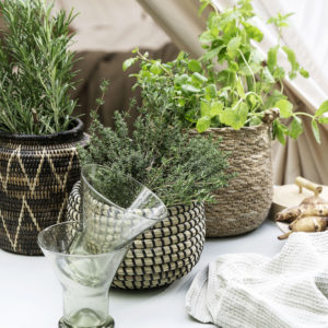 woven seagrass basket with herbs in it