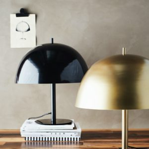 Curious Egg Toto Lamp